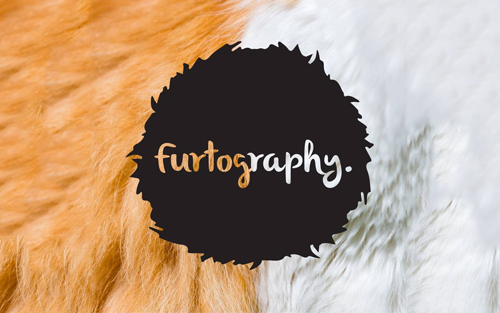 Project: Furtography
